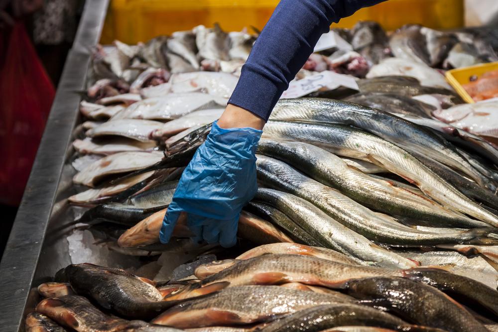 Belajar Dari Pengalaman Mantan Kuli Ini Sukses Bisnis Jual Beli Ikan